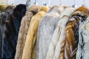 2020年時尚變革者的挑戰